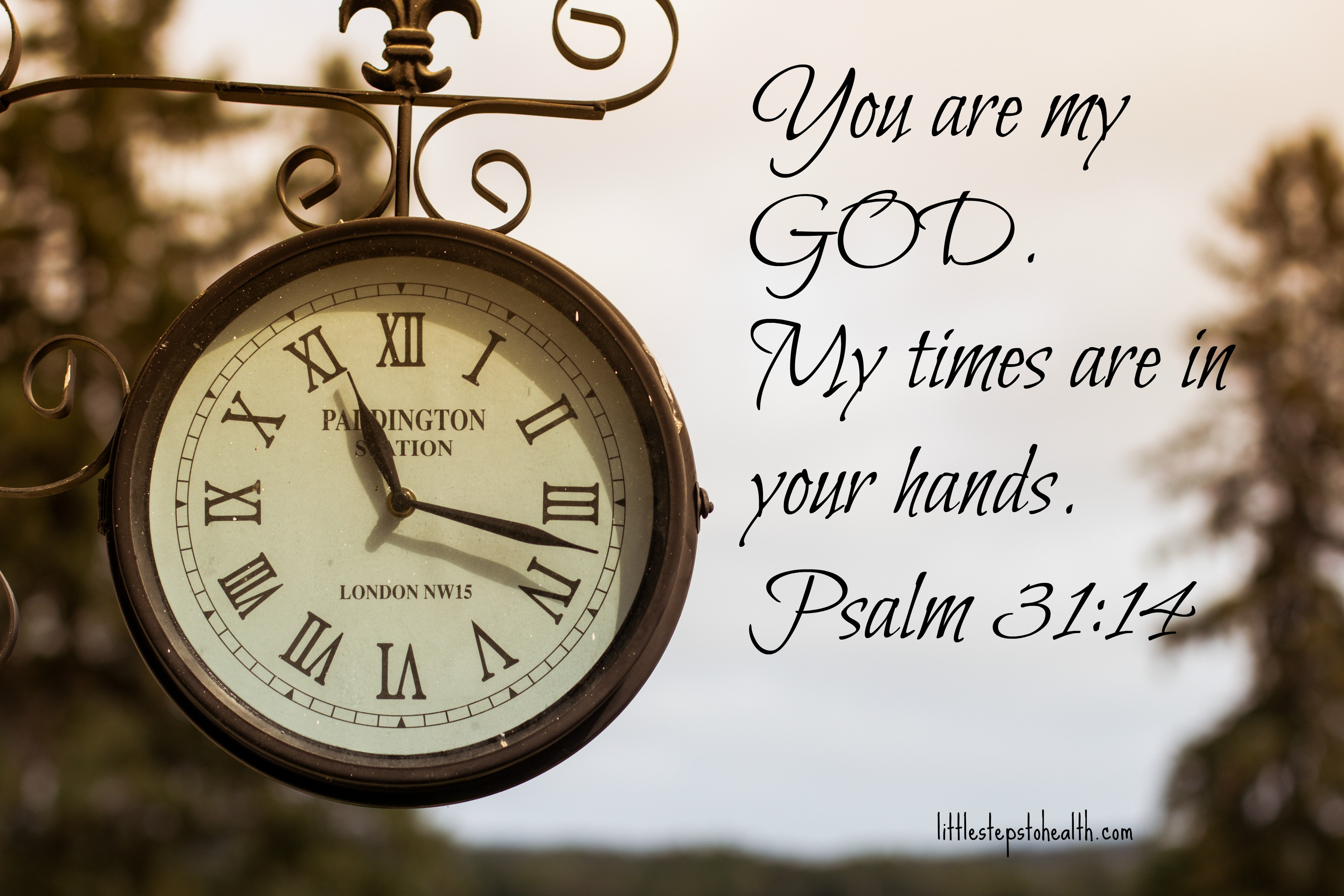 Image result for My times are in your hands