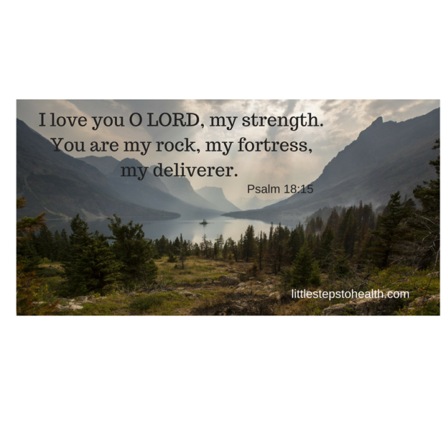 I love you O LORD, my strength